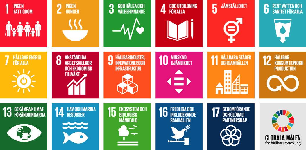 Xmentor ser fram emot en hållbar utveckling och framtid!
